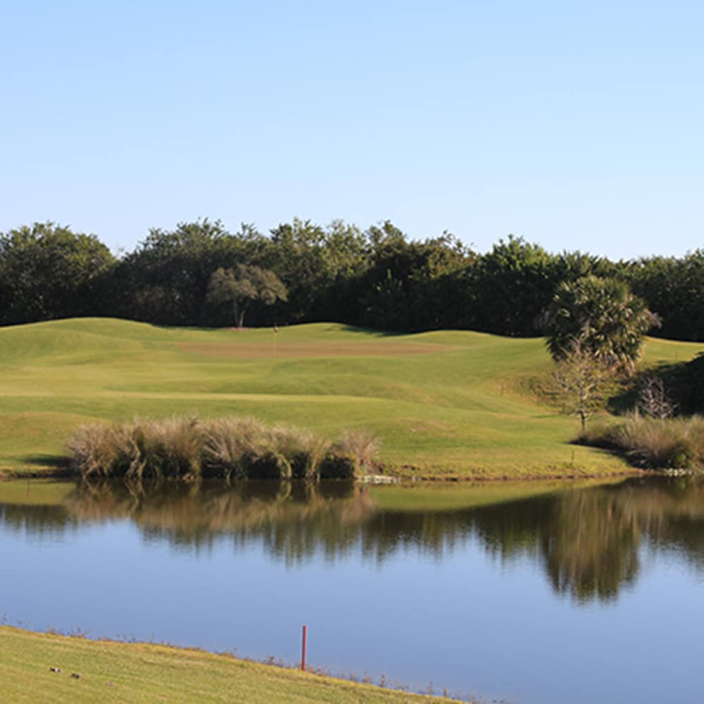 international golf maintenance consulting project management